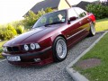 Alpina B10 B10 (E34) 4.6 (340 Hp) full technical specifications and fuel consumption