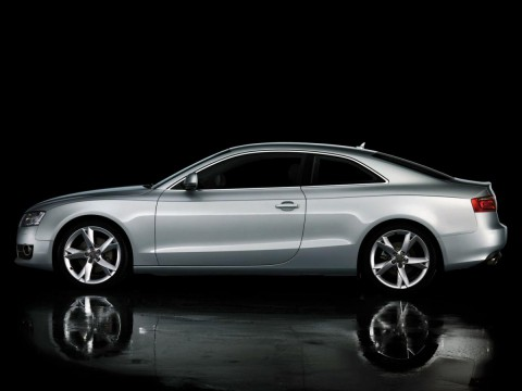 Technical specifications and characteristics for【Audi A5 (8T3)】