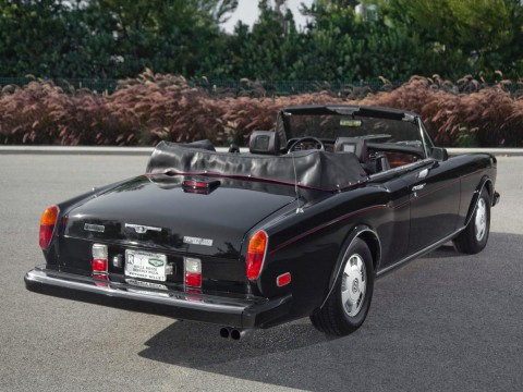 Technical specifications and characteristics for【Bentley Continental (1984)】