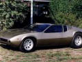 Technical specifications of the car and fuel economy of De Tomaso Mangusta