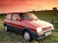 Technical specifications of the car and fuel economy of MG Metro
