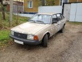 Moskvich 214121412-136