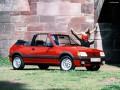 Peugeot 205205 I Cabrio (741B,20D)