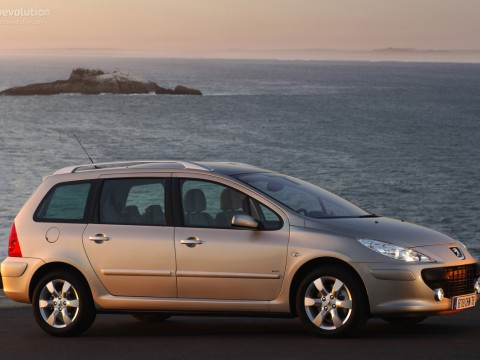 Technical specifications and characteristics for【Peugeot 307 Station Wagon】