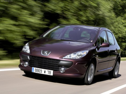 Technical specifications and characteristics for【Peugeot 307】