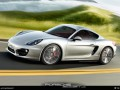 Technical specifications of the car and fuel economy of Porsche Cayman