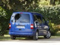Volkswagen Caddy Caddy Maxi Life 1.9 TDI (105 Hp) 4MOTION full technical specifications and fuel consumption