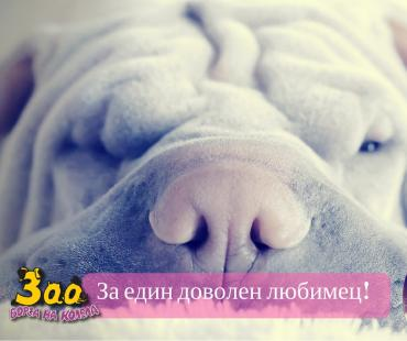 ЗОО ГРУП-БГ ООД[1]— Zaplata.bg