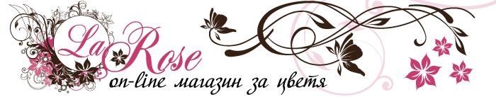Ла Роза 5 ЕООД